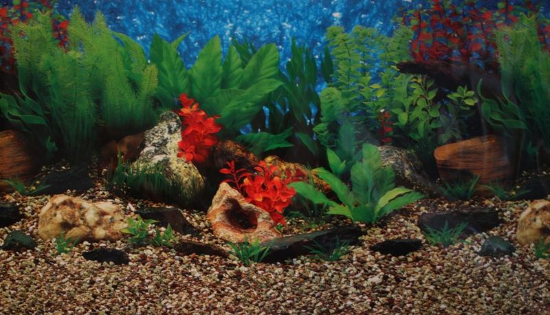 Водонагреватели для аквариума